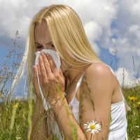 Fast Allergy Cure